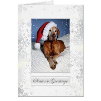 Cartão de Natal 007 de Vizsla do Hungarian