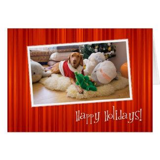 Cartão de Natal 010 de Vizsla do Hungarian