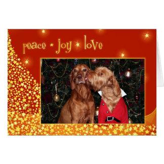 Cartão de Natal 012 de Vizsla do Hungarian