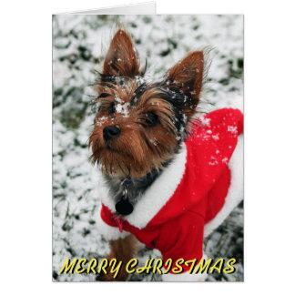 Cartão de Natal bonito de Yorkie