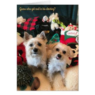 Cartão de Natal canino do coletor de carvão