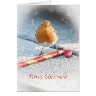 Cartão de Natal com o doce do pisco de peito