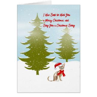 Cartão de Natal como dito por um gato