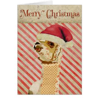 Cartão de Natal cor-de-rosa da alpaca