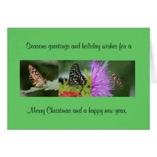 Cartão de Natal da borboleta