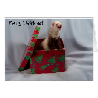 Cartão de Natal da doninha