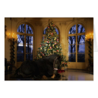 Cartão de Natal da égua do frisão