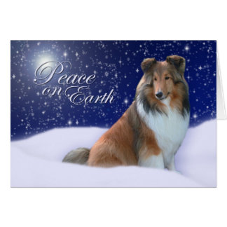Cartão de Natal da paz de Sheltie