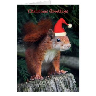 Cartão de Natal das garras do papai noel