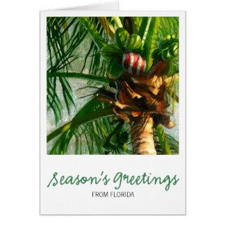 Cartão de Natal de Florida do coco