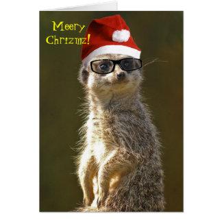 Cartão de Natal de Meerkat