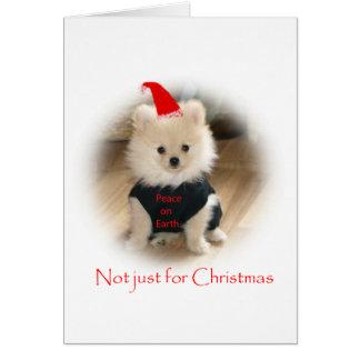 Cartão de Natal de Pomeranian