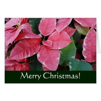 Cartão Cartão de Natal de prata das poinsétias do mármore