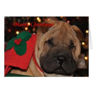 Cartão de Natal de Sharpei