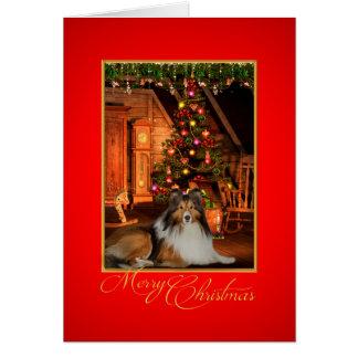 Cartão de Natal de Sheltie