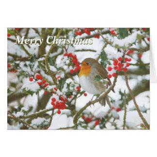 Cartão de Natal do azevinho & do pisco de peito