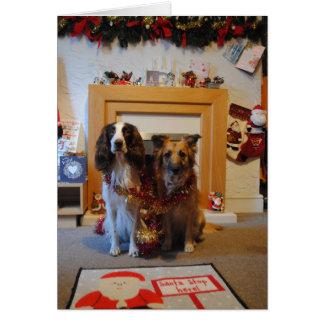 Cartão de Natal do cão