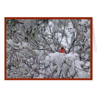 Cartão de Natal do cardeal 6211-2 da neve