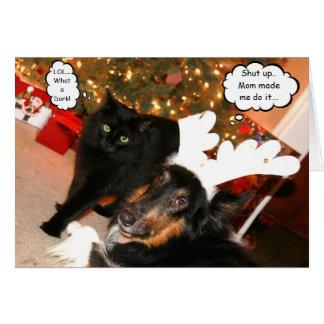 Cartão de Natal do Collie engraçado & do gato