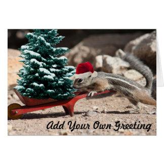 Cartão de Natal do duende do esquilo do papai noel