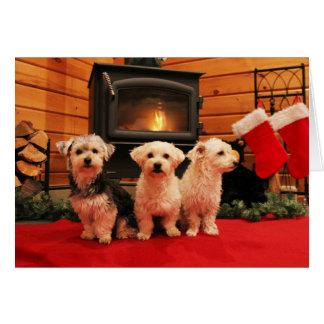 Cartão de Natal do filhote de cachorro da lareira