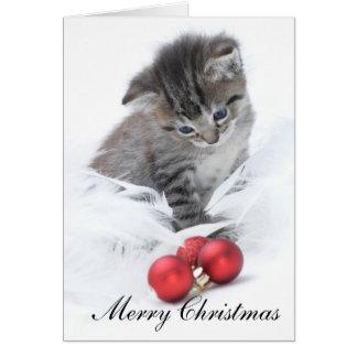Cartão de Natal do gatinho