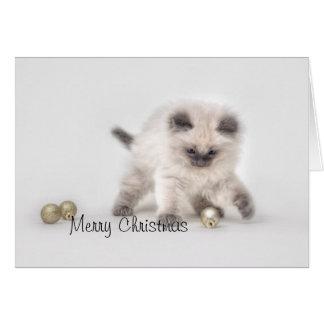 Cartão de Natal do gatinho de Ragdoll