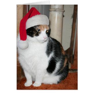 Cartão de Natal do gatinho do papai noel para o