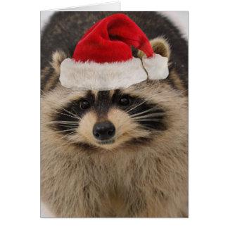 Cartão Cartão de Natal do guaxinim