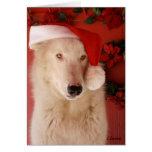Cartão de Natal do lobo branco