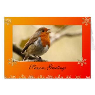 Cartão de Natal do modelo do pisco de peito