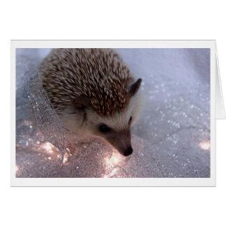 Cartão de Natal do ouriço