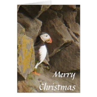 Cartão de Natal do papagaio-do-mar
