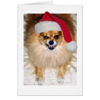 Cartão de Natal do papai noel de Pomeranian