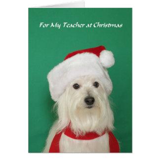 Cartão de Natal do professor -- Cão bonito