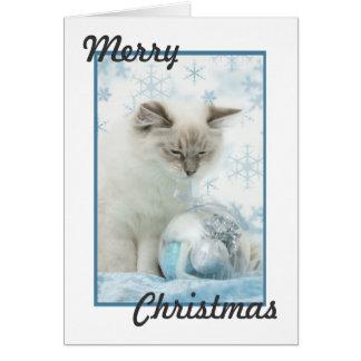 cartão de Natal do ragdoll