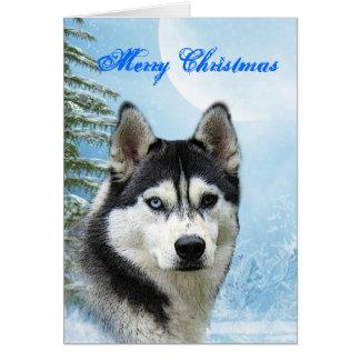 Cartão de Natal do rouco Siberian