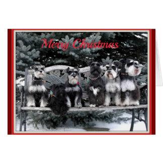 Cartão de Natal do Schnauzer