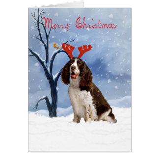 cartão de Natal do spaniel de springer - spanie do