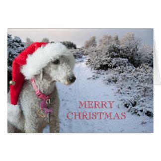 Cartão de Natal do terrier de Bedlington