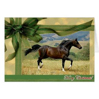 Cartão de Natal do vazio do cavalo de Morgan