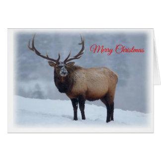 Cartão de Natal dos alces