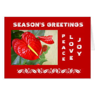 Cartão de Natal dos cumprimentos da estação