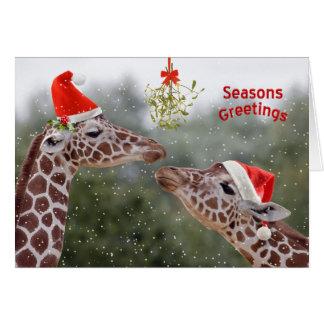 Cartão de Natal dos momentos do visco