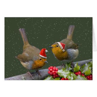 Cartão de Natal dos robins de Bobbin (mensagem