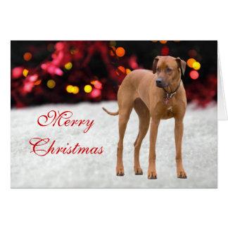 Cartão de Natal feito sob encomenda da foto do cão