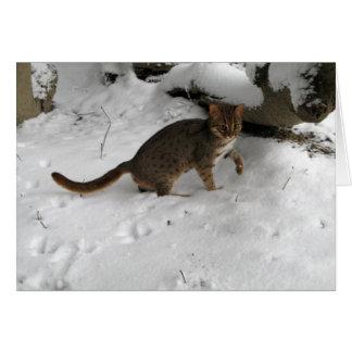 Cartão de Natal - gato manchado oxidado 2