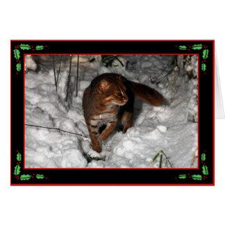 Cartão de Natal - gato manchado oxidado (preto)