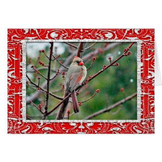 Cartão de Natal horizontal do cartão do cardeal