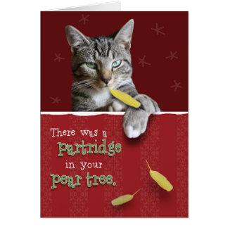 Cartão de Natal impertinente cómico do gato